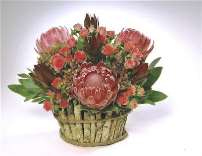 Two types of Protea, pnk spray roses and Brunia berries make up this pink design.