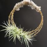 airplant wreath flower duet