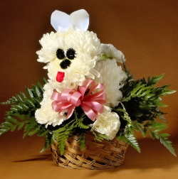 Flower Puppy Novelty