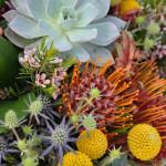 Field to Vase Floral Design