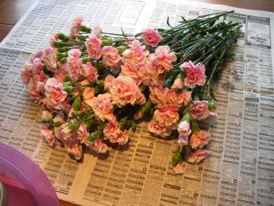 Start with 2 bunches of Mini Pink Carnations