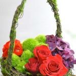 mossy basket