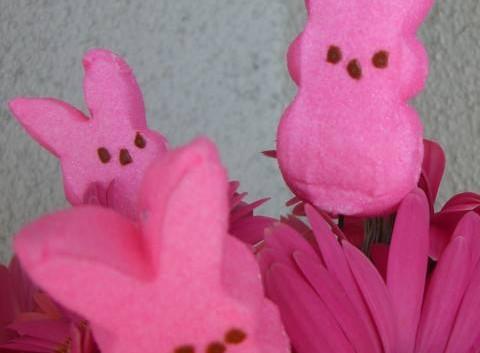 http://flowerduet.com/wordpress/wp-content/uploads/2014/04/easter-bunny-flowers-480x353.jpg