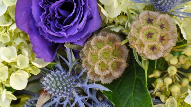 https://flowerduet.com/wordpress/wp-content/uploads/2014/05/DSC_0483-628x353.jpg