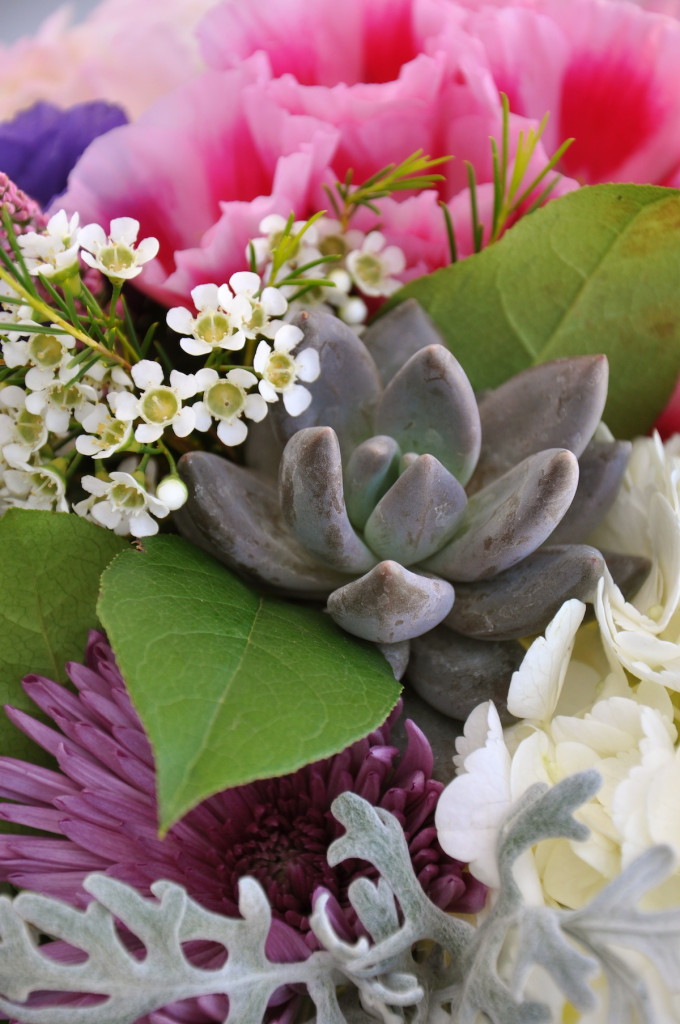 Closeup of a centerpiece which featured succulents, salal, dusty miller, spider mum, two kinds of hydrangea, roses, wax flower, scabiosa pods and goditia. Flowers by Flower Duet.