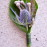 http://flowerduet.com/wordpress/wp-content/uploads/2014/05/purple-thistle-boutonniere-flowerduet-47x47.jpg