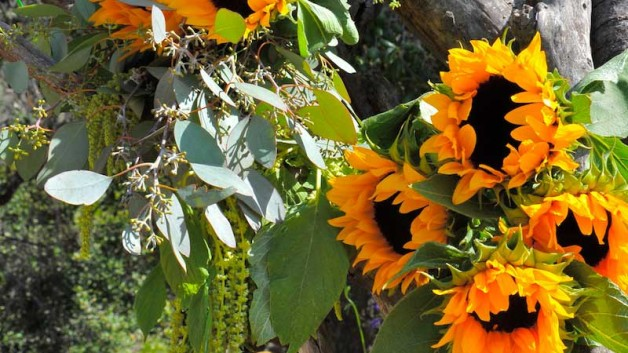 http://flowerduet.com/wordpress/wp-content/uploads/2014/07/flowerduet-ranch-sunflower-arch-details-628x353.jpg