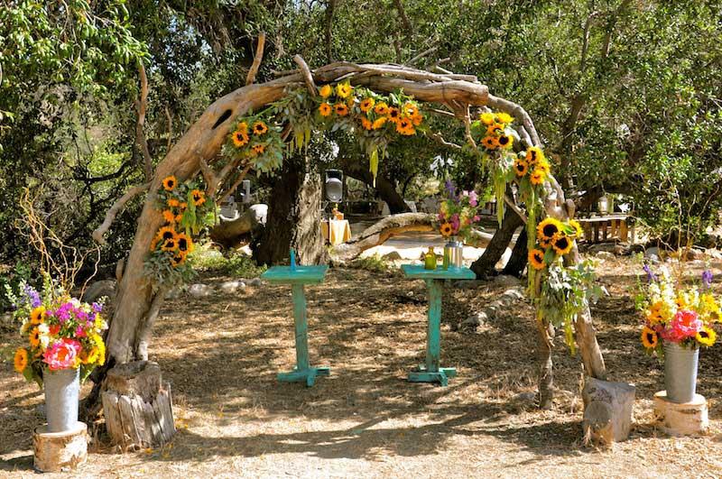 flowerduet-ranch-sunflower-arch-full