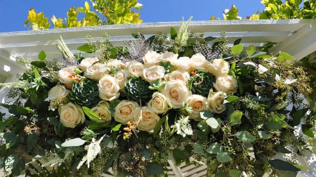http://flowerduet.com/wordpress/wp-content/uploads/2014/07/flowerduet-succulent-arch-detail-628x353.jpg