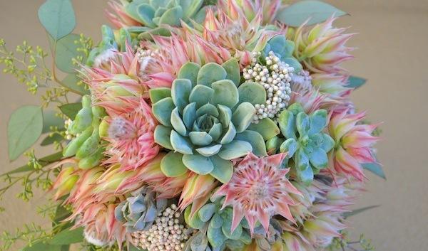 http://flowerduet.com/wordpress/wp-content/uploads/2014/09/flowerduet.com-blushing-bride-protea-succulent-bridal-bouquet-600x353.jpg