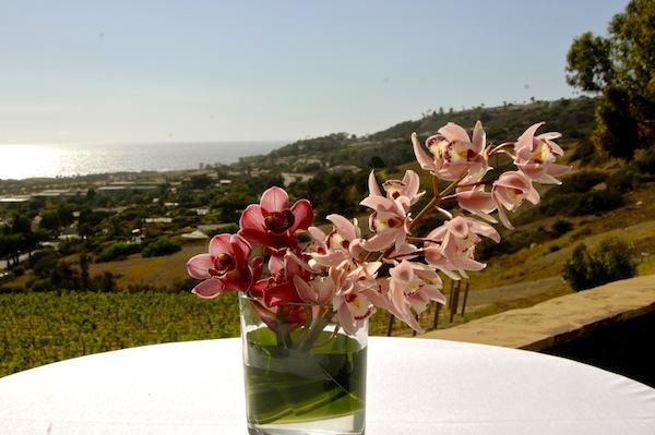 flowerduet.com-orchid-cocktail-designs