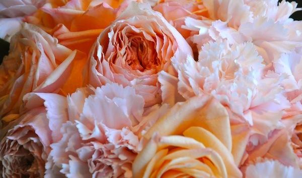 http://flowerduet.com/wordpress/wp-content/uploads/2014/10/flowerduet.com-garden-roses-carnations-600x353.jpg