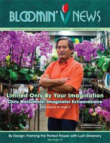 bloomin news