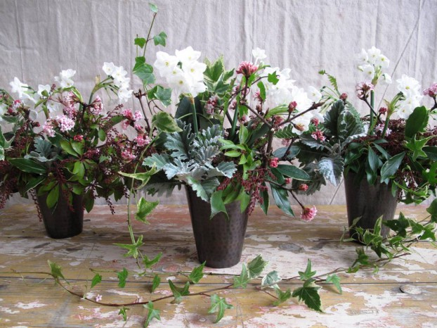 Debra Prinzing Slow Flowers Challenge