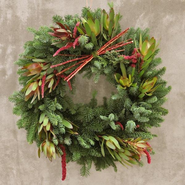flower-duet-christmas-wreath-design-protea-evergreen