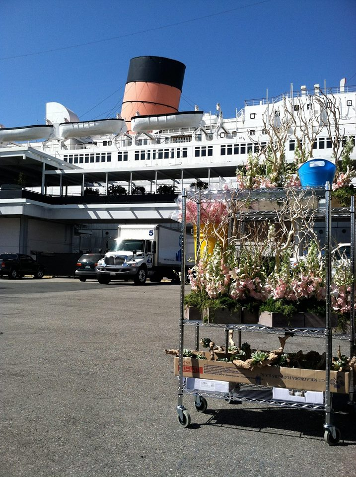 Queen Mary Flowers