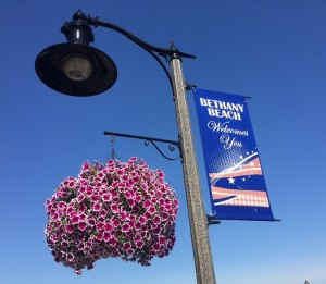 A full hanging basket of lovely petunias greets visits at the seashore in Bethany Beach, Delaware. Photo by Casey Schwartz.