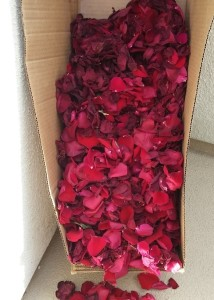 Leftover Freedom Rose Petals Dye How To