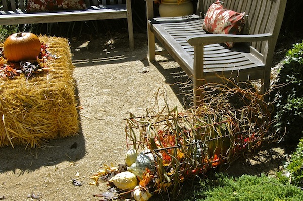 Stick cornucopia with gourds.