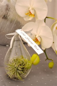 Place Card Holder by Flower Duet