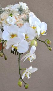 flowerduet-orchid-bouquet