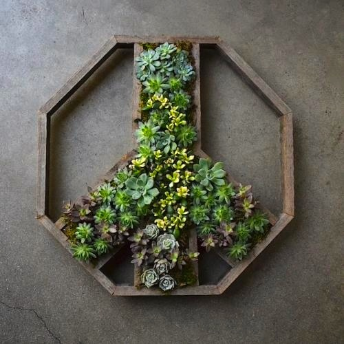 Succulent wall planter in the shape of a Peace Sign.