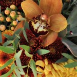 Chocolate orchids for Thanksgiving Centerpieces.