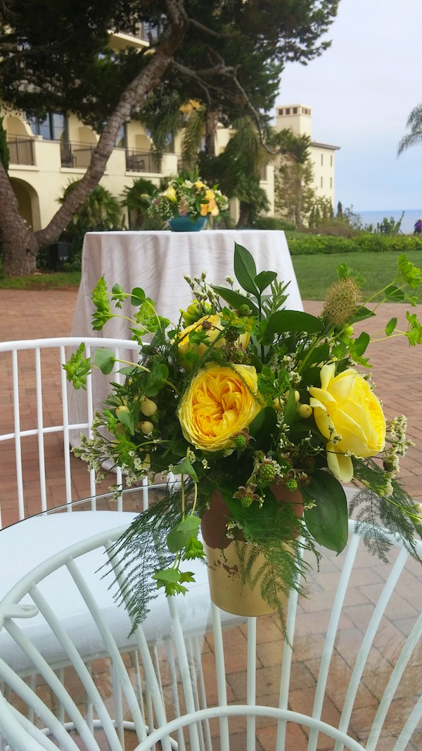 yellow-garden-rose-terracotta