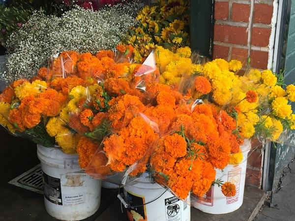 laflowermall-marigolds