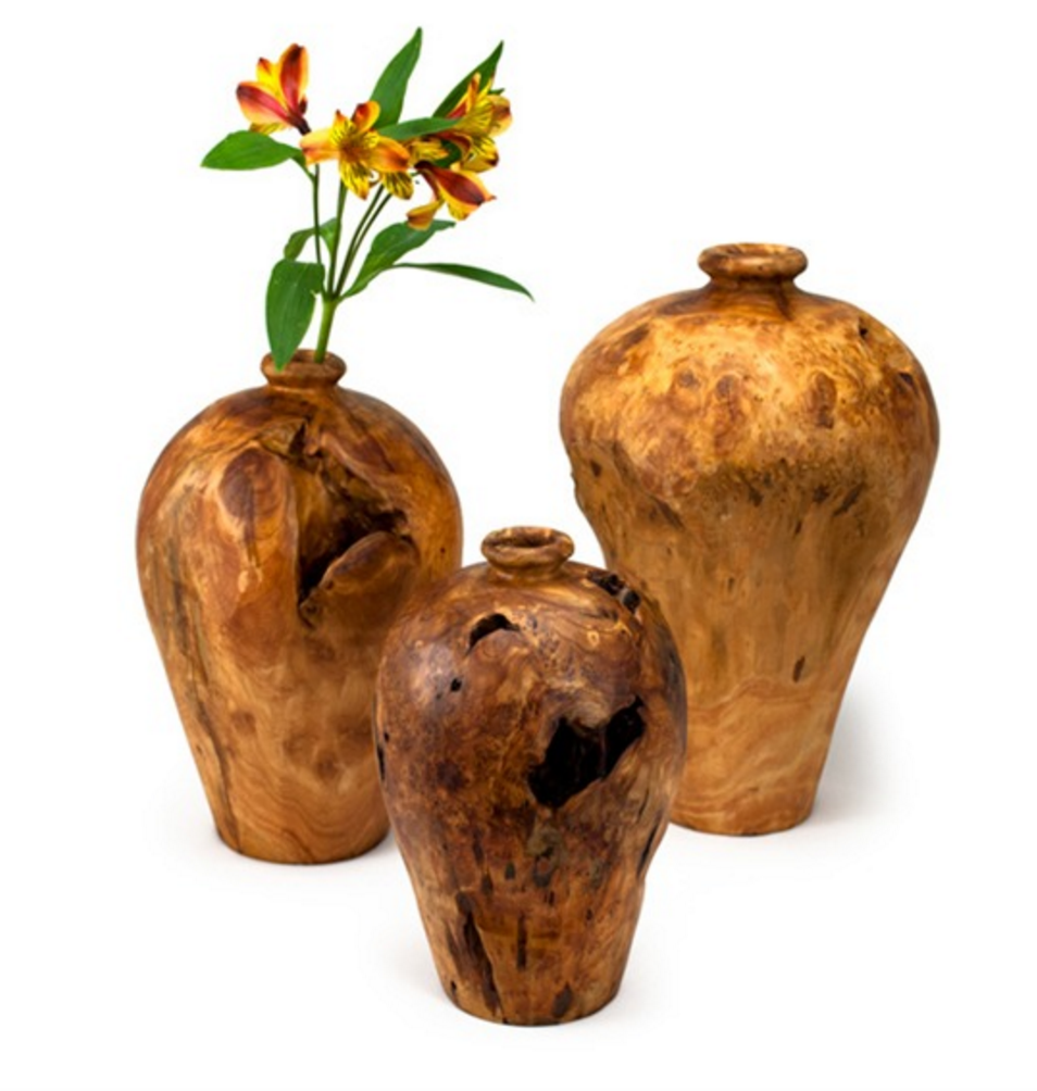 Artisan Root Wood Vases