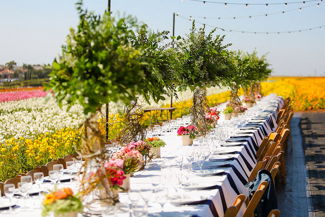 American Grown Flowers Field to Vase Dinner 2017