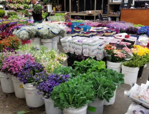 Flower Market Re-Opens for Mother's Day! We are Taking Orders!