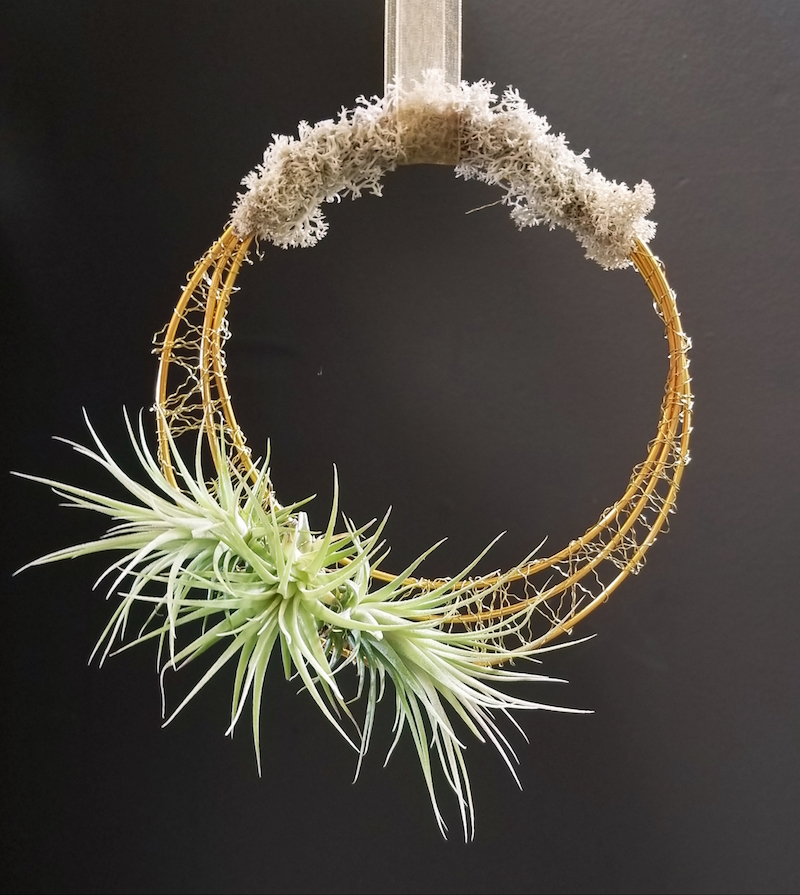 Airp Plant wreath.