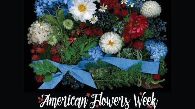 https://flowerduet.com/wordpress/wp-content/uploads/2018/02/american-flowers-week-2018-628x353.jpg