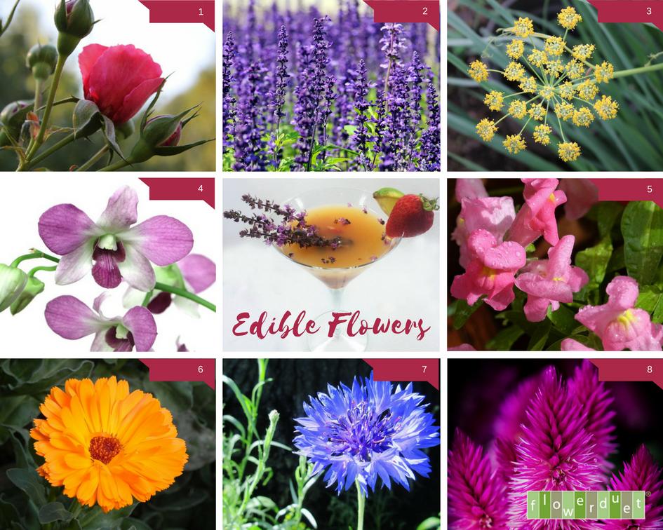 Edible Flowers by Flower Duet