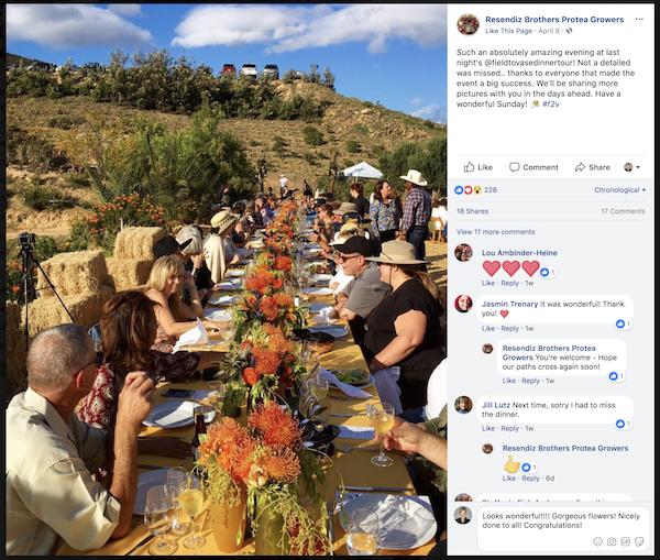 Field to Vase Protea Farm 2018