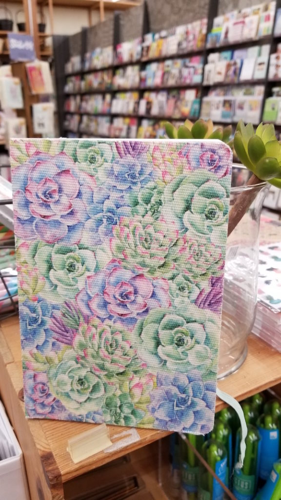 succulent notebook at Cost Plus World Market - Photo by Kit Wertz.