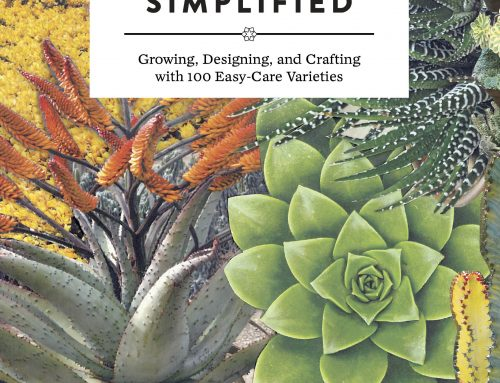 Succulent Book Author Debra Lee Baldwin in Palos Verdes