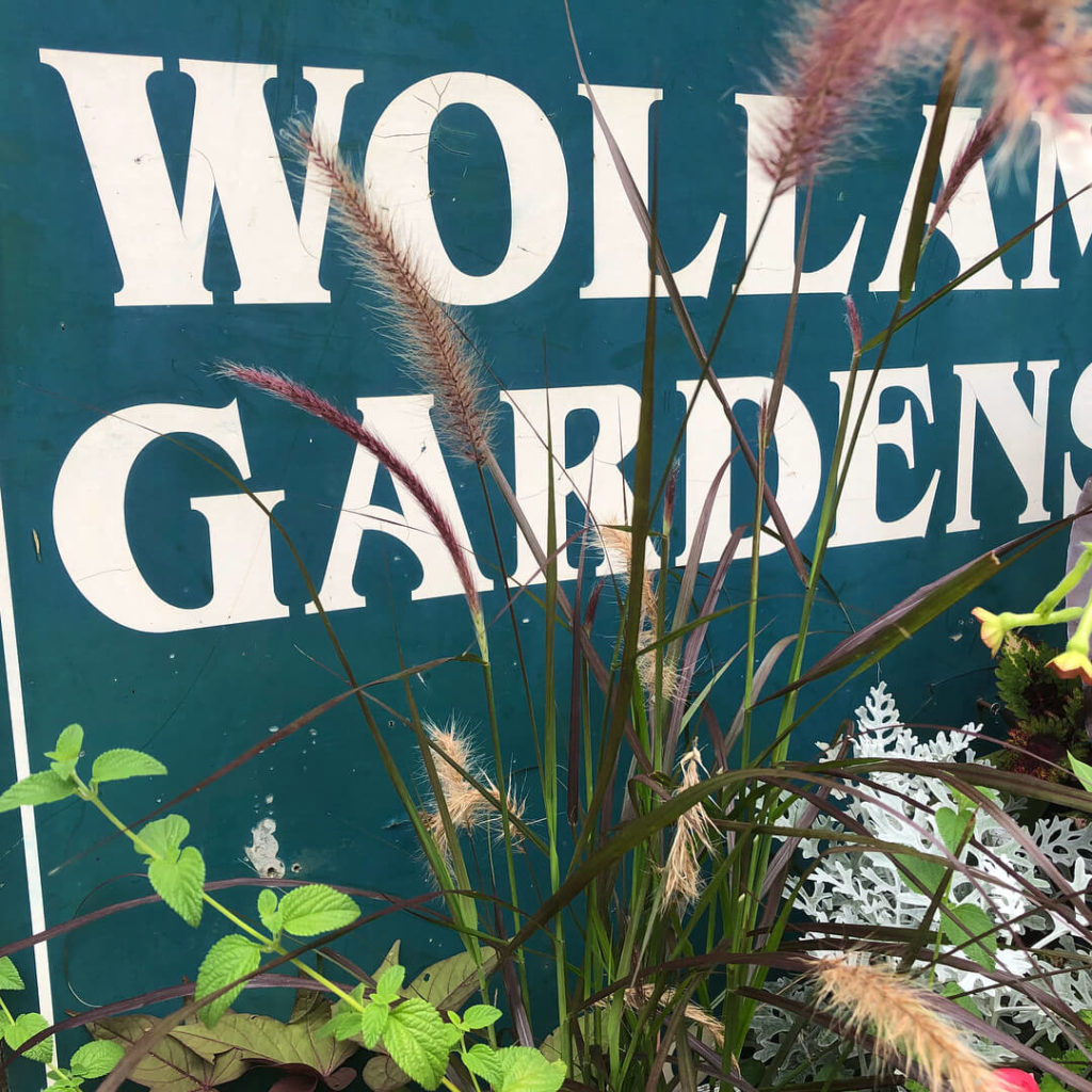 Wollam Gardens Sign