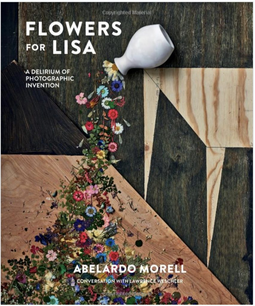Flowers For Lisa Book Cover