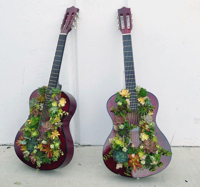 A Start is Born Succulent Guitars by Flower Duet.