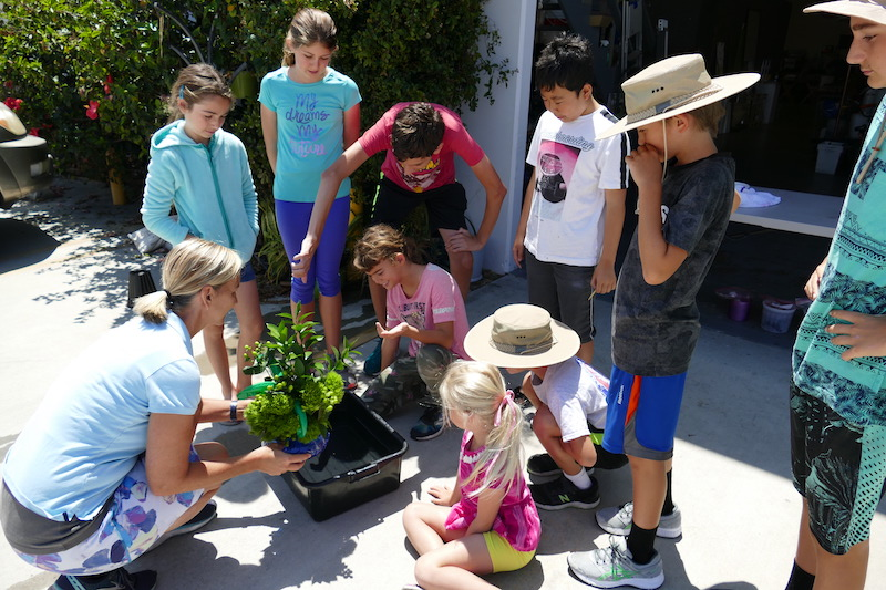 Students listen to Casey outside our studio in Los Angeles during our 2019 Living Art Flower Camp
