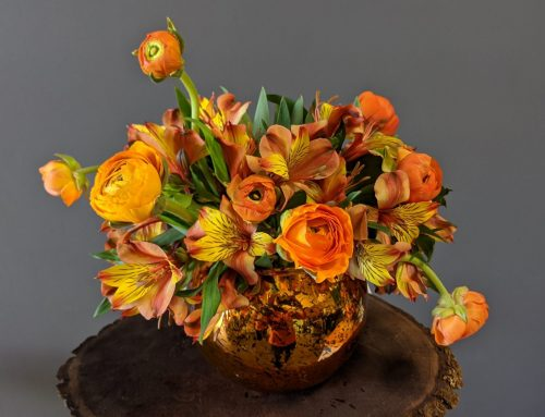 Orange Flowers Inspire Fusion and Security