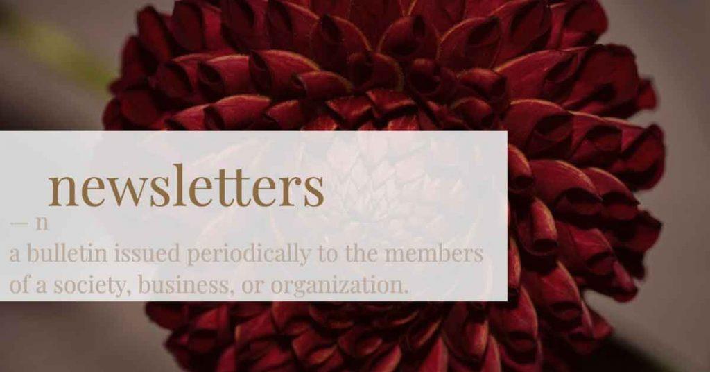 Newsletter Dahlia