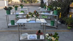 Flower Duet Outdoor Teaching Area