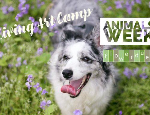 Animals Week: Living ArtCamp