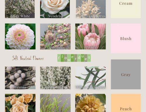 Soft Neutrals for 2021 Flower Class Online