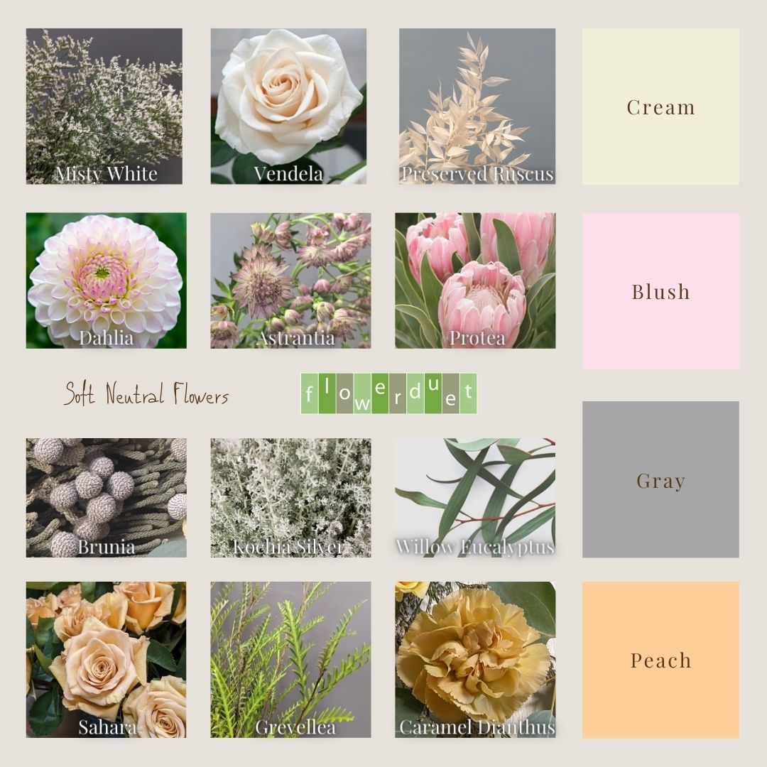 Moodboard by Flower duet for Soft Neutral Flowers