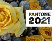 Pantone 2021 Colors Flowers