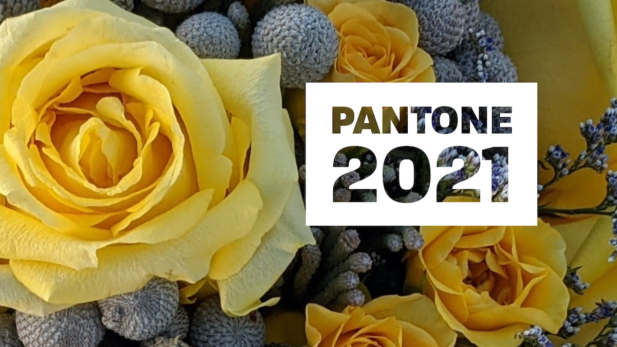 Pantone 2021 Colors Flowers